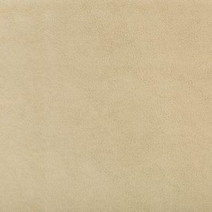 RUFFIAN-16 Kravet Fabric