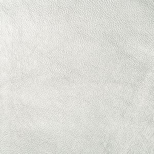 SECRETARIA-11 SECRETARIAT Kravet Fabric