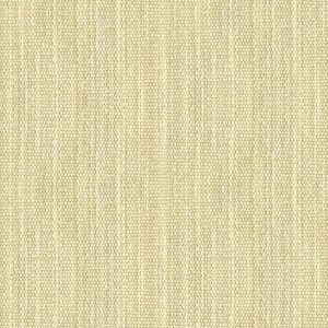 31595-1 Kravet Fabric