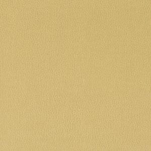 LENOX-23 LENOX Sesame Kravet Fabric