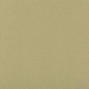 LENOX-30 LENOX Sage Kravet Fabric