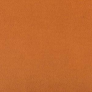 LENOX-424 LENOX Marmalade Kravet Fabric