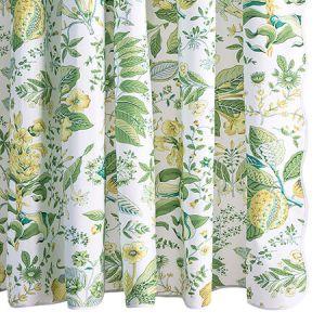 MSC006SHOCI POMEGRANATE Citrus Schumacher Shower Curtain