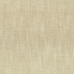 PANIC 1 CHAMPAGNE Stout Fabric