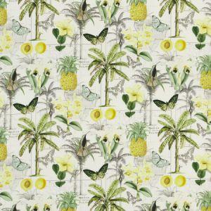 PP50434-3 ORINOCO Citrus Baker Lifestyle Fabric