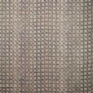 PROCIDA-21 PROCIDA Pewter Kravet Fabric