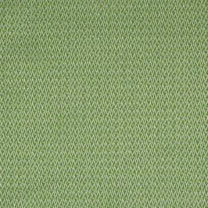 S2211 Endive Greenhouse Fabric