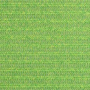 S2431 Palm Greenhouse Fabric