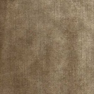 S2585 Shimmer Greenhouse Fabric