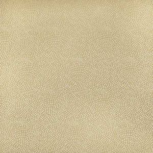 S2897 Palomino Greenhouse Fabric
