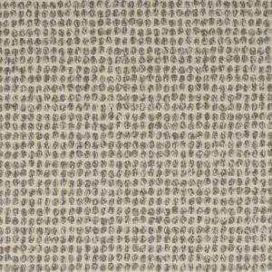 S2962 Fog Greenhouse Fabric
