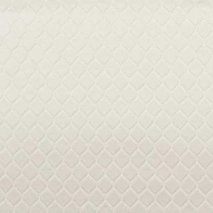 S3071 Off White Greenhouse Fabric