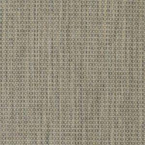 S3724 Chrome Greenhouse Fabric