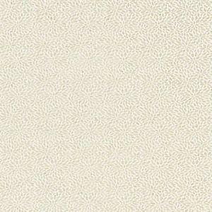 SC 0001 27239 RISA WEAVE Birch Scalamandre Fabric