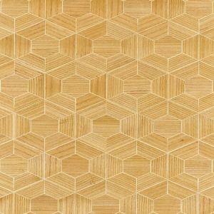 SC 0001 WP88467 HIVE - WOOD Cashew Scalamandre Wallpaper