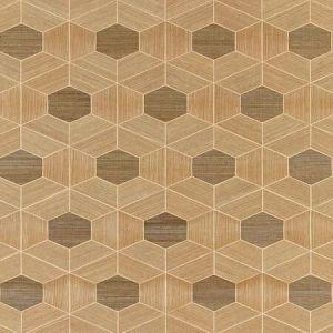SC 0001 WP88468 HIVE - SISAL Burnished Scalamandre Wallpaper