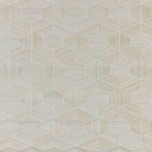 SC 0001 WP88469 HIVE - ABACA Snowflake Scalamandre Wallpaper