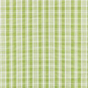 27122-003 PRESTON COTTON PLAID Pear Scalamandre Fabric