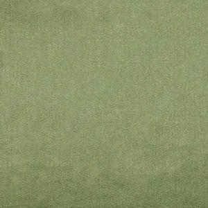36288-003 ACADEMY Gray Scalamandre Fabric