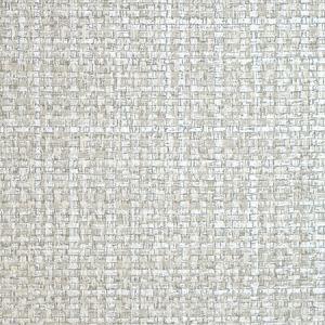 SC 0008 WP88443 JUTE Silver Dollar Scalamandre Wallpaper