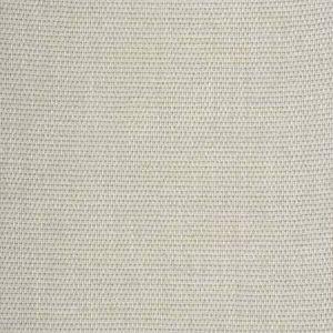SILTSTONE BASKET Glimmering Ecru Fabricut Fabric