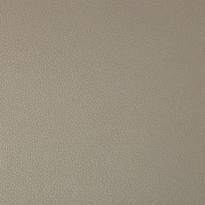 SYRUS-106 SYRUS Driftwood Kravet Fabric