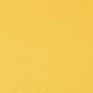 SYRUS-40 SYRUS Sunshine Kravet Fabric