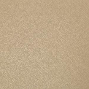 SYRUS-61 SYRUS Quicksand Kravet Fabric