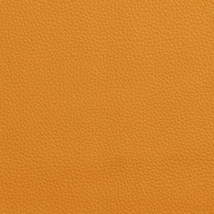 V151 Mango Charlotte Fabric
