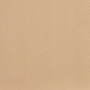 V156 Sand Charlotte Fabric