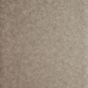 W0056/01 HEXAGON Antique Clarke & Clarke Wallpaper