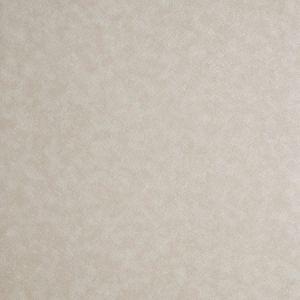 W0056/05 HEXAGON Parchment Clarke & Clarke Wallpaper