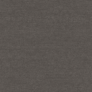 WBN 00019173 PHOENIX Black Scalamandre Wallpaper