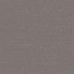 WBN 00029173 PHOENIX Dark Grey Scalamandre Wallpaper