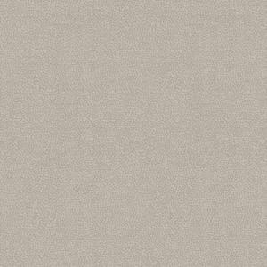 WBN 00059173 PHOENIX Taupe Scalamandre Wallpaper