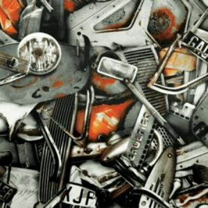 WH0 00013314 CARAMBOLAGE Terre Scalamandre Wallpaper
