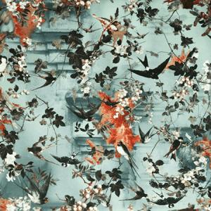 WH0 00023306 HIRONDELLES Ete Scalamandre Wallpaper