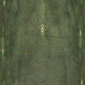 WH0 0004 3326 PRECIEUX Vert Scalamandre Wallpaper