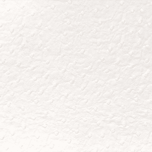WSM 0001CAME CAMELOS White Scalamandre Wallpaper