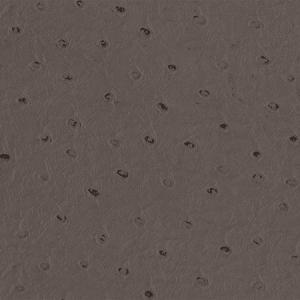 WSM 0014CAME CAMELOS Chocolate Scalamandre Wallpaper